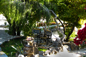 Our gardens at Zebra River Lodge